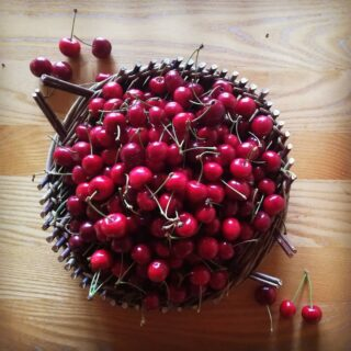 Beautiful cherries! A fussy crop not usually reliable in bonny Scotland but this lovely dry summer has been perfect! Don't they look beautiful in this lovely Catalan tray made by @wovenwillowwork . #cherries #cherries🍒 #fruit #homeharvest #homestead #smallholding #scottishlife #scotland #selfsufficiency #sustainability #closedloopsystem #closedloop #littlemomentsofmylife #liveauthentic #LiveLife #lovelife #yum #yummy